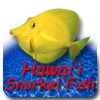 Hawaii Snorkel Fish icon
